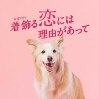 TBS火曜ドラマ『着飾る恋には理由があって』感想