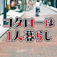オシドラサタデー『コタローは1人暮らし』レビュー